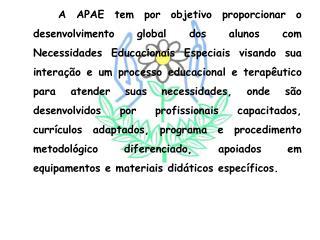 Setor Educação