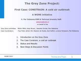The Grey Zone Project: First Case: CONSTRAIN: A cold air outbreak A WGNE initiative