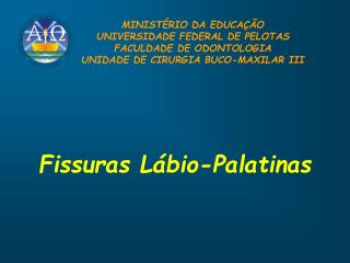 Fissuras Lábio-Palatinas