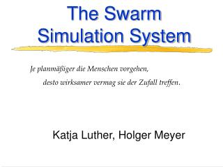 The Swarm Simulation System