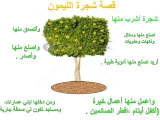 قصة شجرة الليمون