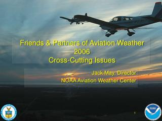 Friends & Partners of Aviation Weather 2006 Cross-Cutting Issues