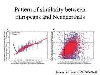 Pattern of similarity between Europeans and Neanderthals