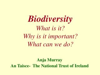 Biodiversity What is it? Why is it important? What can we do?