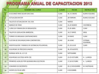 PROGRAMA ANUAL DE CAPACITACION 2013