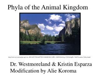 Dr. Westmoreland & Kristin Esparza Modification by Alie Koroma