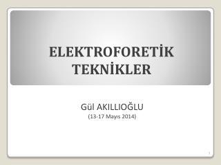 ELEKTROFORETİK TEKNİKLER