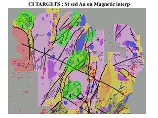 CI TARGETS : St sed Au on Magnetic interp