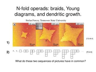 N-fold operads: braids, Young diagrams, and dendritic growth.