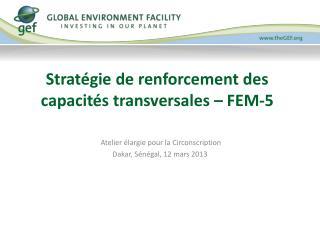 Stratégie de renforcement des capacités transversales – FEM-5