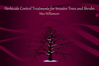 Herbicide Control Treatments for Invasive Trees and Shrubs Max Williamson