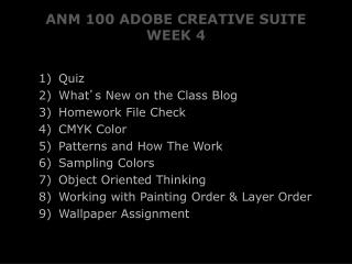 ANM 100 ADOBE CREATIVE SUITE WEEK 4