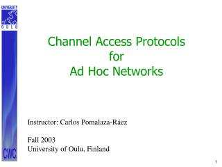 Channel Access Protocols for Ad Hoc Networks