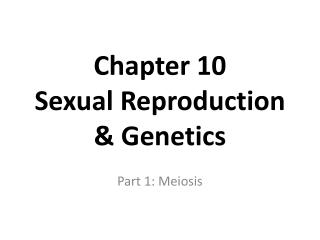 Chapter 10  Sexual Reproduction  Genetics