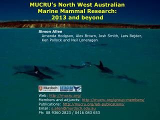 MUCRU's North West Australian Marine Mammal Research: 2013 and beyond