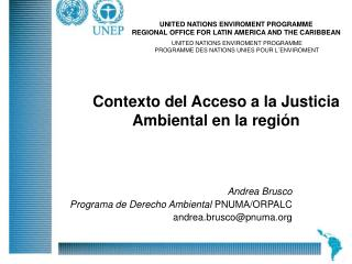 Andrea Brusco  Programa de Derecho Ambiental  PNUMA/ORPALC andrea.brusco@pnuma