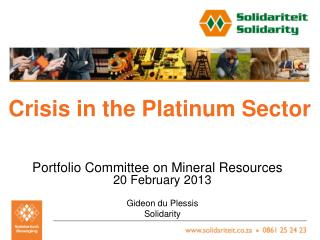 Crisis in the Platinum Sector