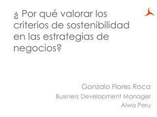 ¿ Por qué valorar  los  criterios  de  sostenibilidad  en  las estrategias  de  negocios ?