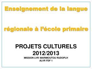 PROJETS CULTURELS  2012/2013 MISSION LVR/ MARIMOUTOU RUDOPLH ALVR FDF 1