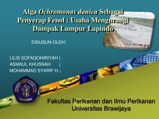 Alga  Ochromonas danica  Sebagai  P enyerap  Fenol : Usaha Mengurangi Dampak Lumpur Lapindo