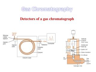 Detectors of a gas chromatograph