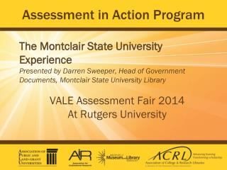 Assessment in Action Program
