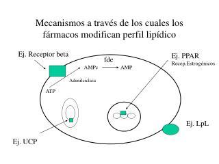 Mecanismos a trav s de los cuales los f rmacos modifican perfil lip dico