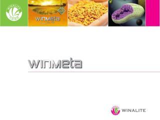 WinMeta Výsledky výzkumu