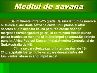 Mediul de savana
