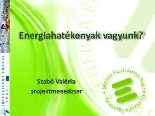 Energiahatékonyak  vagyunk?