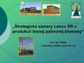 """""""Strategické zámery Lesov SR v produkcii lesnej palivovej biomasy"""""""