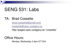 SENG 531: Labs