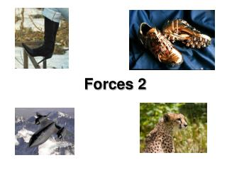 Forces 2