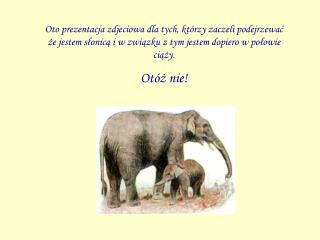 Nasz mały Fasola urodził się 10 grudnia 2005 roku o godzinie 14.06