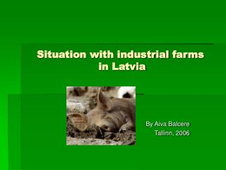 Situation with  industrial  farm s  in Latvia