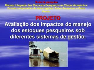 Import � ncia da pesca