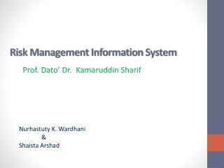 Risk Management  Information  System