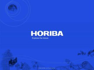 2009 HORIBA, Ltd. All rights reserved.