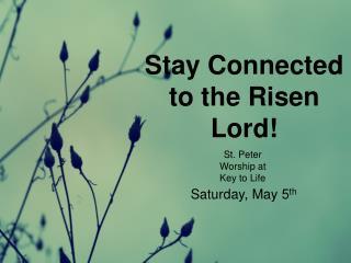 St. Peter  Worship at  Key to Life