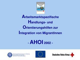 A rbeitsmarktspezifische H andlungs- und  O rientierungshilfen zur I ntegration von MigrantInnen