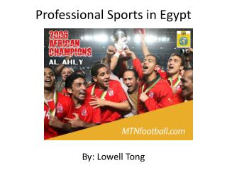 Professional Sports in Egypt