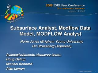 Subsurface Analyst, Modflow Data Model, MODFLOW Analyst