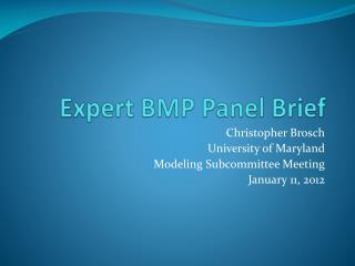 Expert BMP Panel Brief