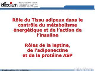 R le du Tissu adipeux dans le contr le du m tabolisme  nerg tique et de l action de l insuline  R les de la leptine,  de