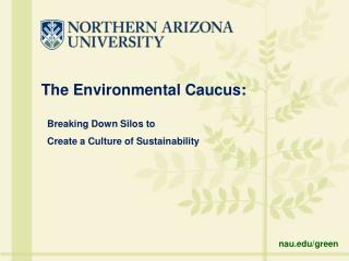 The Environmental Caucus:
