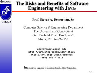 The Risks and Benefits of Software Engineering with Java