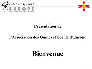 Présentation de  l'Association des Guides et Scouts d'Europe Bienvenue