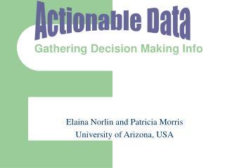 Gathering Decision Making Info
