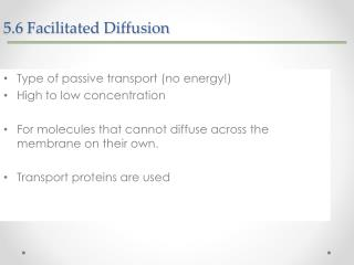 5.6  Facilitated Diffusion