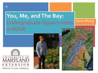 You, Me, and The Bay:  Undergraduate Opportunities in AGNR